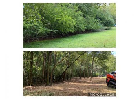 Forestry Mulching - Free Estimates